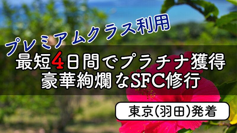 SFC合宿from羽田プレミアムクラス