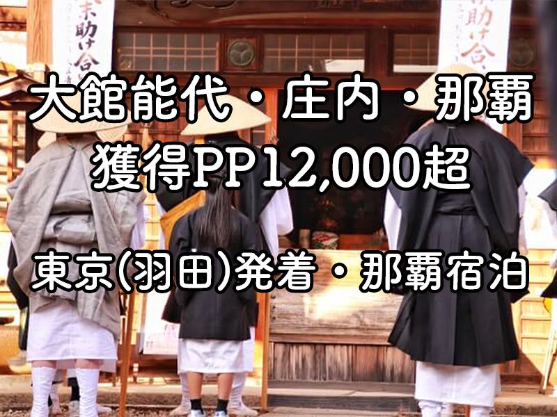 羽田発着・那覇・庄内・大館能代
