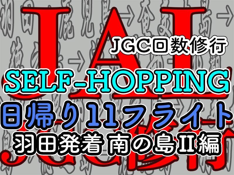 JGCセルフホッピング 羽田発着11レグ
