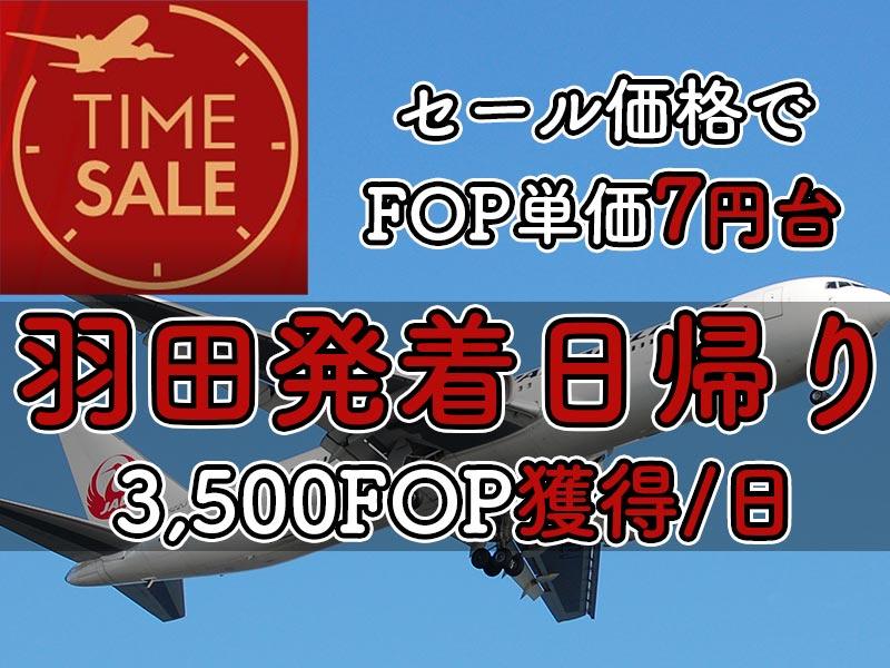 JAL国内線タイムセール0316HND1day