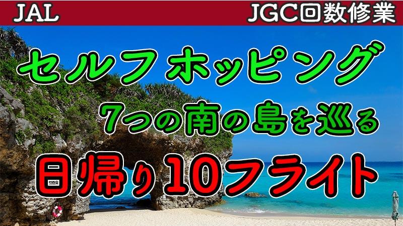 JAL羽田発日帰りセルフホッピング