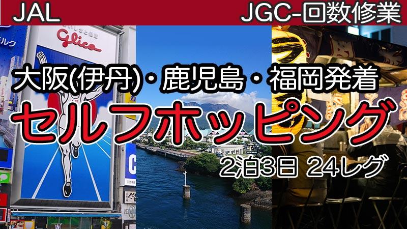 大阪(伊丹)・鹿児島・福岡発着セルフホッピング