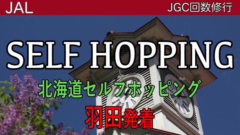 JGCセルフホッピング丘珠 羽田発着